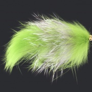 Green and Grey Esox Lucius