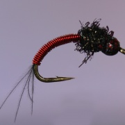 Copper Larva Red