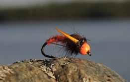 Stinger orange - Stinger orange krok str 12