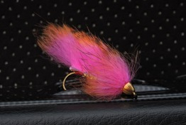 Zonker Orange/Hot pink - Zonker Orange/Hot pink krok str 6