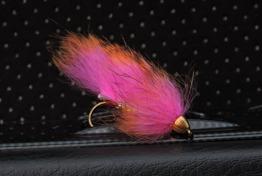 Zonker Orange/Hot pink - Zonker Orange/Hot pink krok str 6