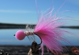 Bobbies Pink - Bobbies pink krok str 8