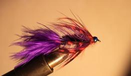Royal BH Wolly bugger - Royal Wolly Bugger str 8