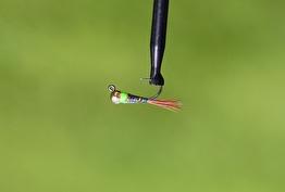 Hullinglös jiggfluga rainbow/chartreuse - Hullinglös jiggfluga tungsten Rainbow/chartreuse str 12