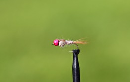 Hare´s Ear BH hullinglös pink - Hare´s Ear BH Hullinglös pink str 12