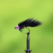 Ekorr-zonker black
