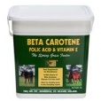 Beta Carotene,Folic Acid & Vitamin E