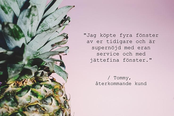 AlfaFönster omdöme av Tommy