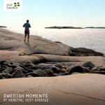 Swedish Moments Exempel 3