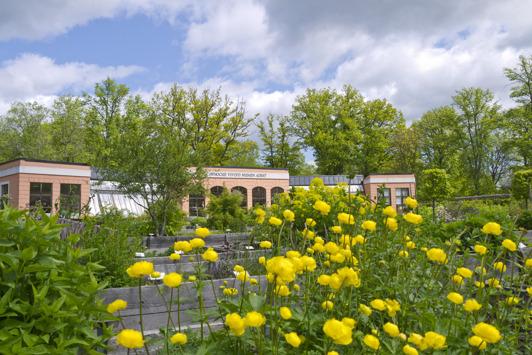 Linnés Orangeri, Möckelsnäs