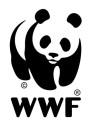 WWF Panda_genomskinlig för vit bakgrund