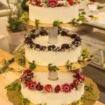 bröllop sandsjö
