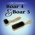 Boar 4 & Boar 5