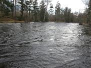 Pool 1 Emån, Grönskog