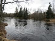 Pool 5 Emån, Grönskog