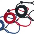 Harness Lead - sele och koppel i ett