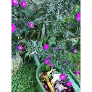 Tips! Vi har mycket grönsaksavfall och använder Guldkannan som komposthink. Då är det lätt att vattna med lakvattnet som även det gillas av jord och växter. Bra att hälla ut så att inte komposten blir för blöt.