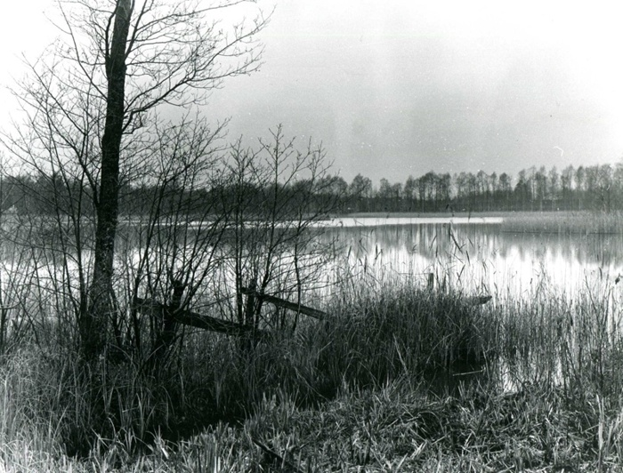 A. 46 Endast digital bild. Kusen nordväst om Varnhem. Foto Bo Ramviken. Bild från Gudrun Ramviken, Sörgården, Varnhem, 2014. Insatt av Kent Friman, 2014-04-27