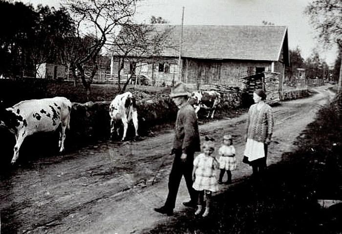 B. 10 (2) Endast digital bild! Ljungstorpsvägen som fägata för Lövgrens kor utanför Lövberga ladugård och med SAj-spåret längst bort i bilden. Man ser del av väntkuren som placerades vid järnvägsövergången 1913 alltså ca 10 år tidigare än fotot, samt en av korsvarningarna för järnväg. Med på fotot är Henning och barnen Britta och Ingrid samt hustrun Berta. Det är lätt att föreställa sig hur dålig Ljungstorpsvägen kunde vara vid regn och efter tjäle och ändå var detta tills ca 50 år innan bilden togs enda vägen mellan Skövde och Skara! Den var säkert inte bättre innan dess, så man förstår behovet av en ny väg över berget. (Bild från dottersonen Håkan Säll, Skövde www.sells.se. Insatt av Kent Friman, 2014-02-25. Läs mer på www.saj-banan.se & www.ljungstorpshistoria.se!