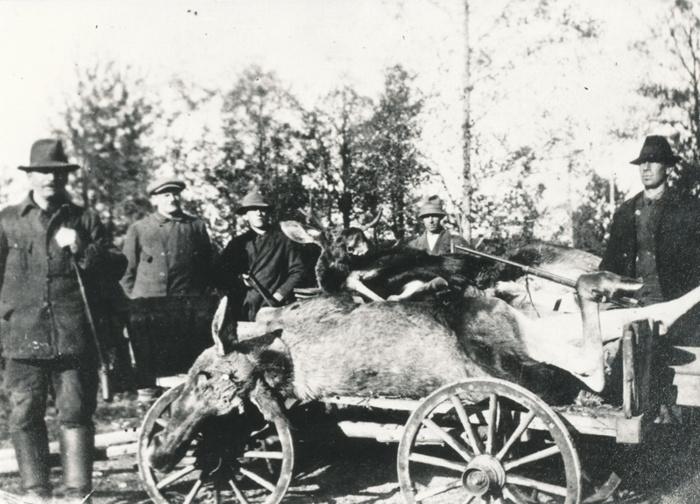 C 3 (2) Jaktlag vid Svarvarebacken år 1920. Ernst Bill, Våmb och Hugo Schill, Svarvarebacken. Insatt av Kent Friman, 2014-02-26. Läs mer på www.ljungstorpshistoria.se!