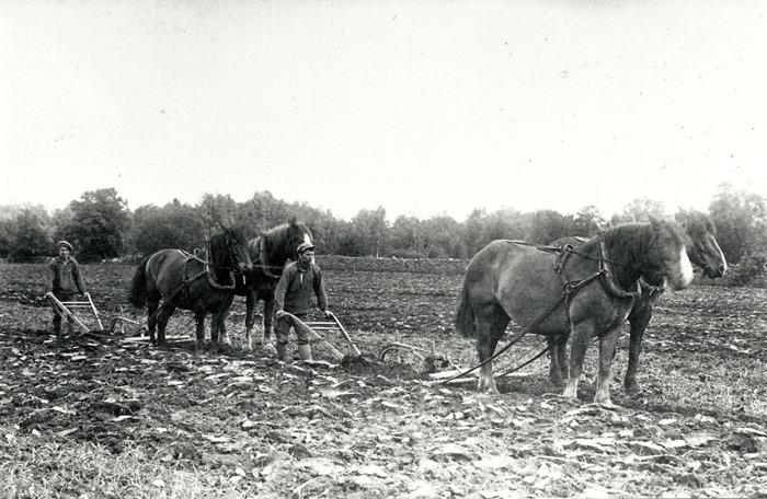 C. 14 (2) Plöjning på Håltorp 1926, David Roth och Georg Lindström. Insatt av Kent Friman, 2014-02-26- Läs mer på www.ljungstorpshistoria.se!