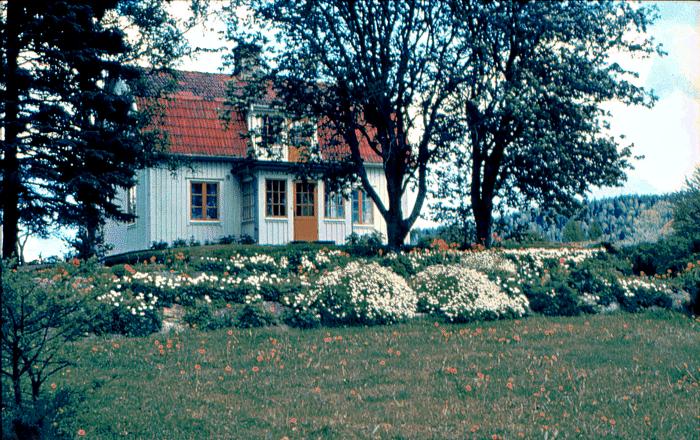 A. 39 (2) Endast digital bild. Smedsgården i sin prakt med foto taget från trädgården utmed Ljungstorpsvägen, med Sörbillingen i bakgrunden. Huset finns inte längre. Bild från Petrus Peinert, Varnhem. Insatt av Kent Friman, 2014-08-25.