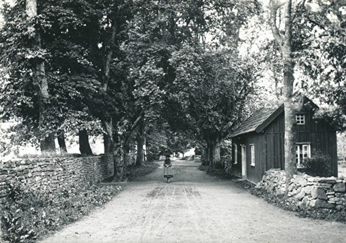 Fotograf Ludvig Eriksson, Skövde - fotograferad 1892. (Bild från Västergötlands Museum - bildarkivet/bildnummer: A71924)
