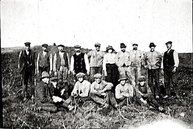 Potatisplockning på Ähle gård20190911