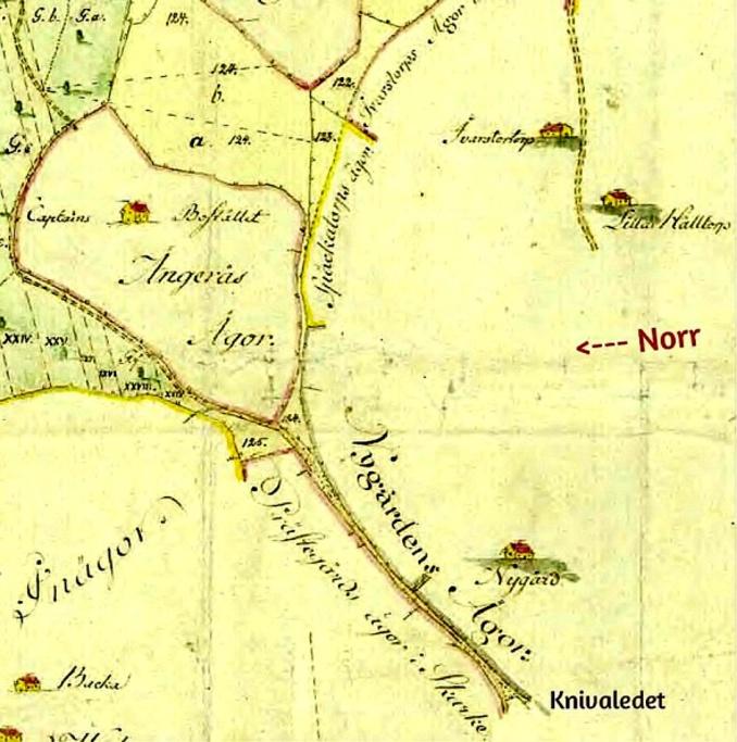 Nygården karta 1794