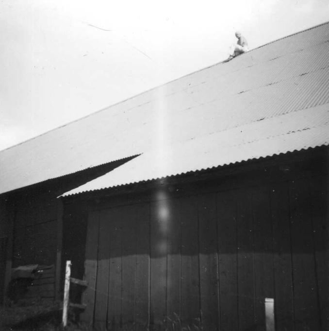 Foto från Tommy Nilsson, Nygården 3, 2020