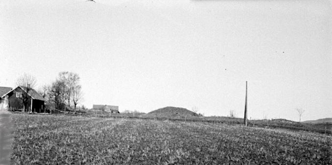 Fogdegården Gärdet med stora högen på andra sidan vägen. Ödegården i bakgrunden -Foto: S. Welin 29/9 1930