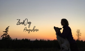 ZenDog Anywhere -