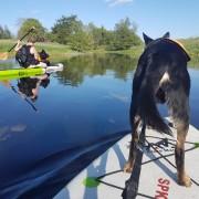 SUP - Öppen paddling