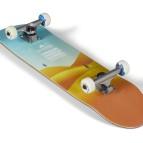 Boardlife   Photo