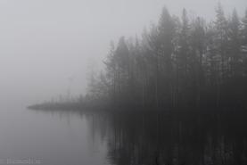 Natur-2576