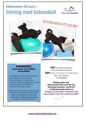 kurs träning med balansboll hund halland halmstad