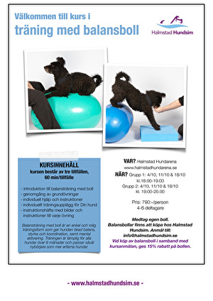 Kurs i träning med balansboll för hund