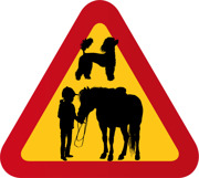 Barn, häst, pudel