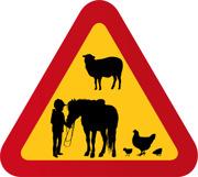 Barn häst höna & får