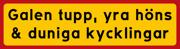 Galen tupp, yra höns & duniga kycklingar