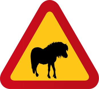 Häst ponny