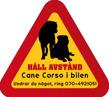 Dekal - Hund i bil Cane Corso - Hund i bil dekal varningstriangel Cane Corso 2 st med egen text