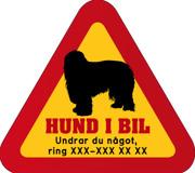 Dekal - Hund i bil med mobilnummer 12