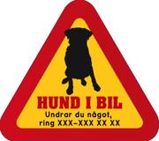 Dekal - Hund i bil med mobilnummer 8