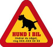 Dekal - Hund i bil med mobilnummer 19