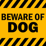 Beware of dog text