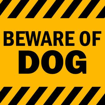 Beware of dog text