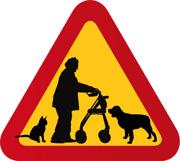 Dam med rullator, katt & hund