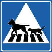 Övergångsställe Katt & hund
