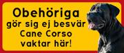 Cane Corso vaktar här 2